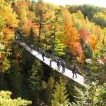 canyon-sainte-anne-automne